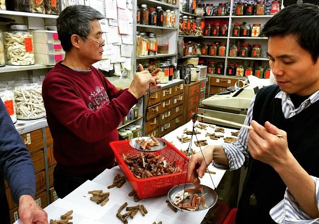 Hong Kong Chinese medicine tour